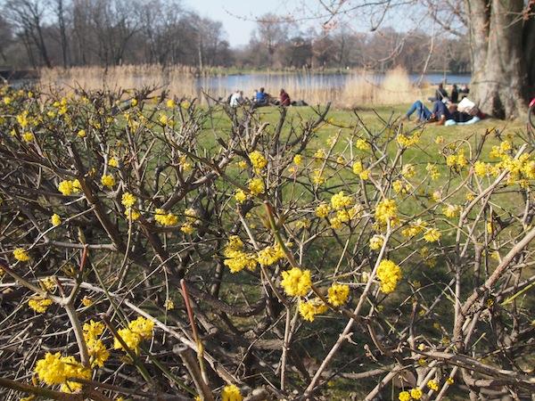 ... wir entscheiden uns für einen romantischen Frühjahrsspaziergang ...