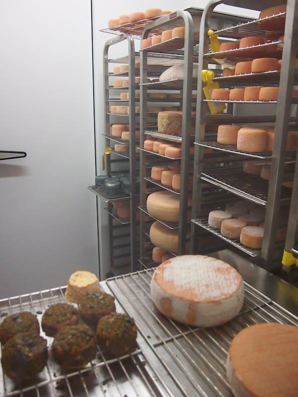 """Blick in das Allerheiligste der Fromagerie Riegersburg: Die Lagerstätten feinster Käsespezialitäten wie Schafkäse-Gewürzmischungen, """"scharfe Busen"""" und viele Exoten mehr!"""