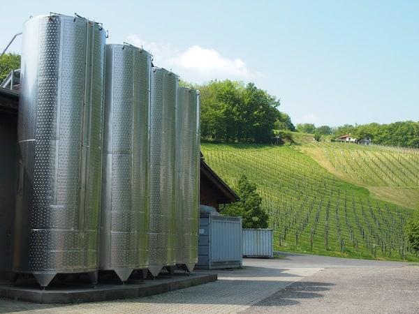 Blick auf die Weingärten direkt aus der Kellerei des Weingut Erich & Walter Polz.