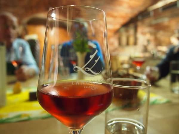 Zu guter Letzt sind wir in seinem Hauskeller eingeladen, Platz zu nehmen, Schilcher-Wein (direkt vor der Nase) zu verkosten sowie hausgemachte Eierspeis' mit nochmal hausgemachtem Kürbiskernöl zu verkosten. Herz für die Region, was willst Du mehr?