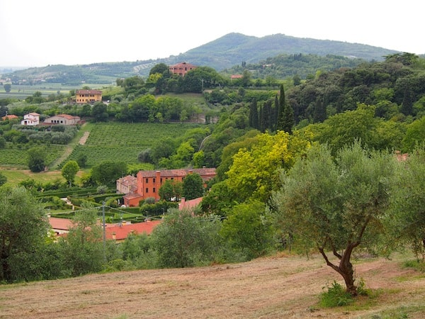 ... über Hügellandschaften, die wirken wie in der Toskana ...