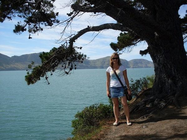 Rund um die Stadt bieten die vulkanischen Hügel der Halbinsel Akaroa schöne Möglichkeiten für Spaziergänge ...