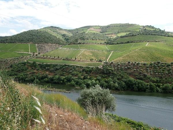 ... die landschaftliche Schönheit des Flusstales wirklich sehr reizvoll.