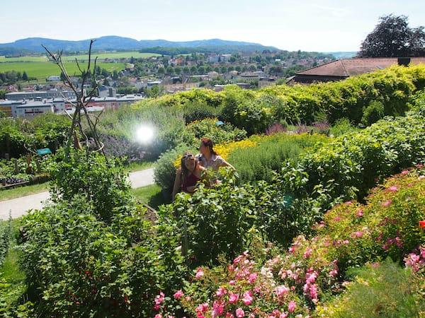 ... und erkunden im Anschluss selbst, was es heißt, sein ganz eigenes Gartenparadies für sich zu entdecken: Jardin Mediterraneen im Stiftspark Melk.