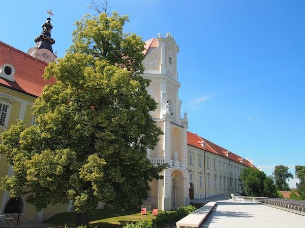 Diese Linde vor der barocken Aussenfassade von Stift Altenburg verströmt einen einmalig betörenden Duft.