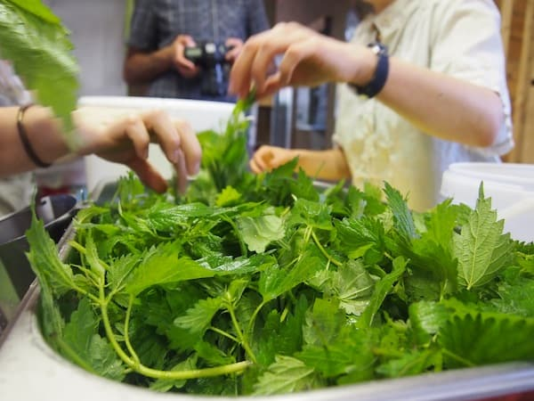 Zurück in der Küche des Kreativ-Bistro & Restaurant KultOUR Deppen kochen wir unser eigenes Süppchen ...