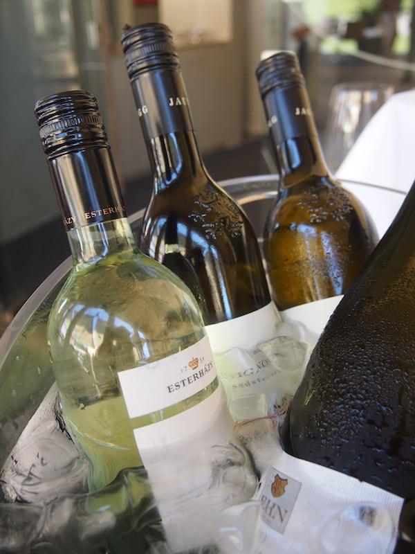 (Wein)Genuss wird hier im Burgenland groß geschrieben ...