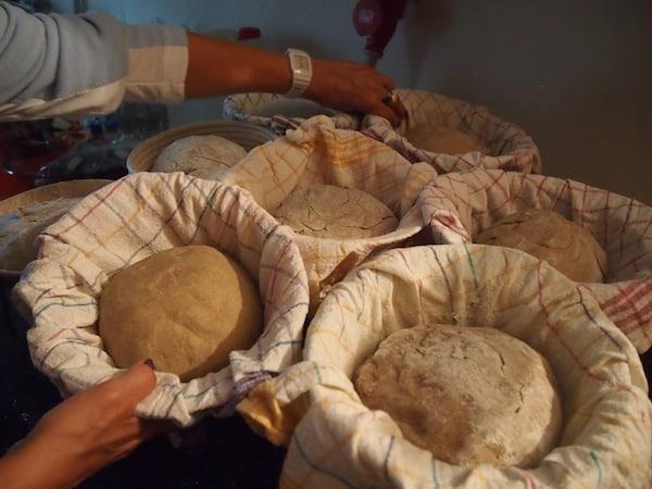 ... bis die Laibe schließlich, gut geknetet, in den Ofen kommen und nach einer guten Stunde fertig gebacken sind!