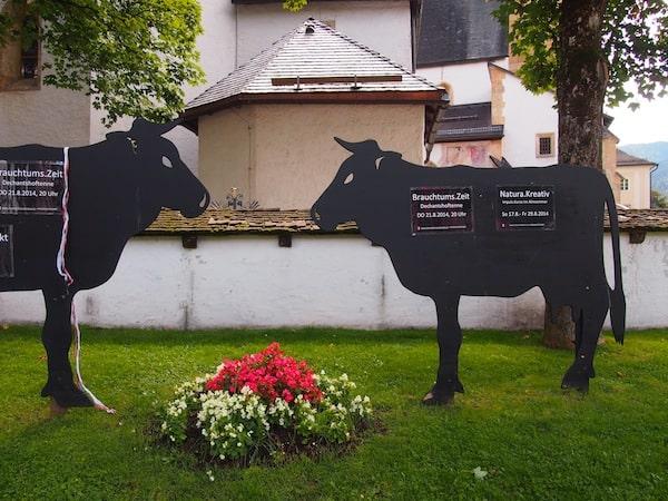 Hier weisen gar die allgegenwärtigen Kühe auf die Veranstaltungsreihe der Natura.Kreativ hin!