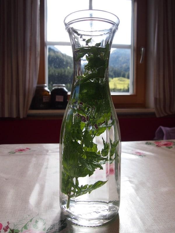... gleich mit einer frischen Stärkung wie dem einfachen Pfefferminzwasser begrüßt zu werden ...