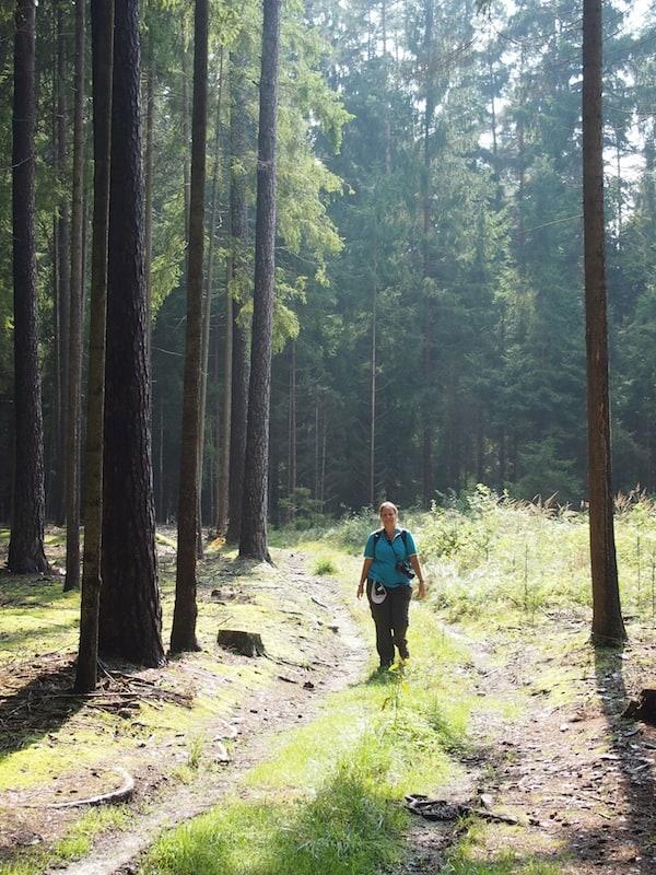 Wir lieben den Wald, die Sonne, die frische Luft ...