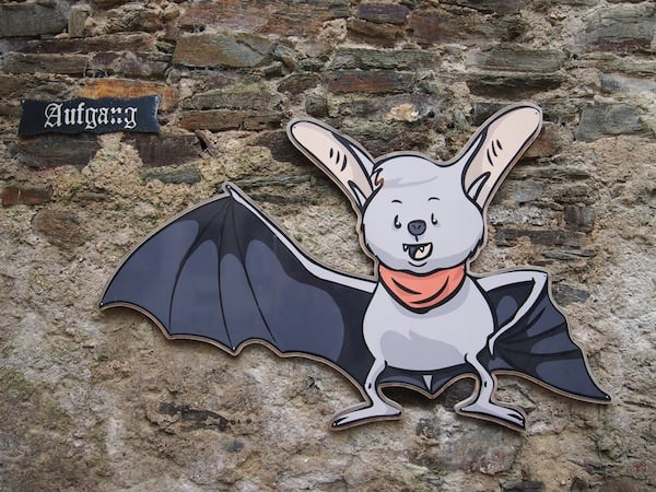 Welcome to Lockenhaus Palace: A special exhibition about bats will tell you more about these fascinating animals living and breeding here!