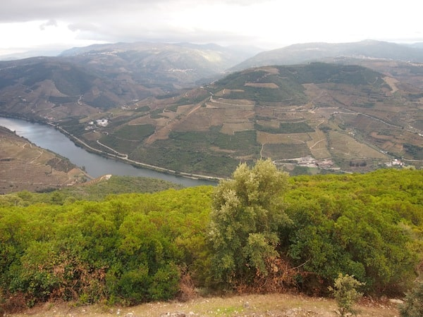 Last but not least, I recommend you take the view from Miradouro do São Leonardo da Galafura, one of the best vantage points overlooking the Central Douro valley.