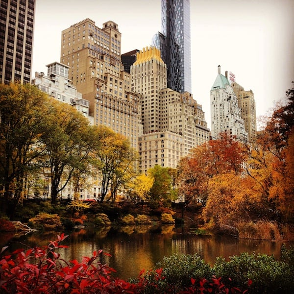 ... and thanks to the hotel's central location on Madison Avenue / 45th Street Manhattan, I did enjoy an early Sunday morning run in Central Park, virtually just round the corner ... WOW!