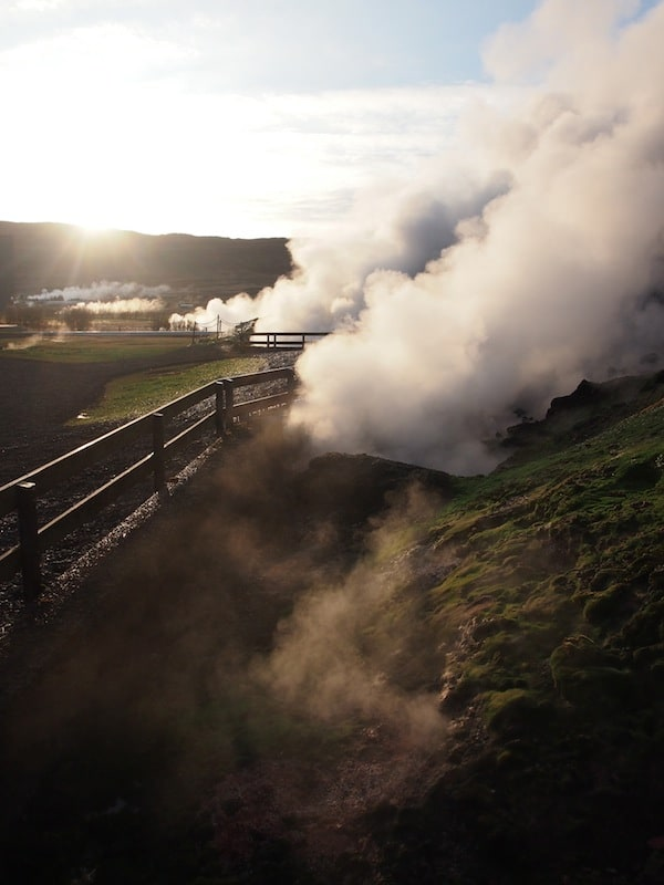 Just how hot it is, is an idea we get from the intense steam around the source waters that boil up out of the ground at almost 100°C! The entire town of Reykholt is thus heated, as well as Björn's uncle running a greenhouse right beside, growing vegetables such as tomatoes or bell peppers. Geothermal energy accounts for everything here in Iceland!