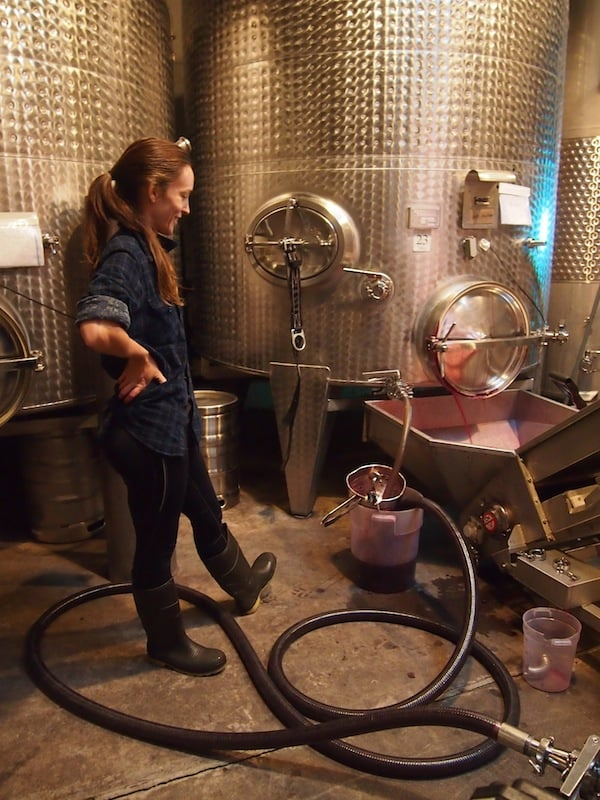 We go behind the scenes to see the actual wine production, here the filtering of the young wine right after its fermentation in this stainless steel tank ...