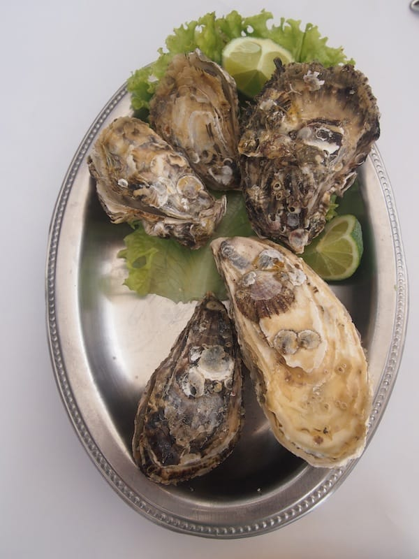 The Restinga restaurant in the Sambaquí city district also serves us excellent fresh oysters …