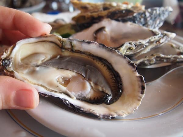 Oh just how I love my oysters here …