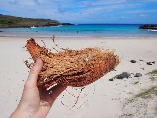 ... am Strand von Anakena Beach. Hier im Norden der Insel Rapa Nui gibt es Kokosnussschalen zuhauf ...