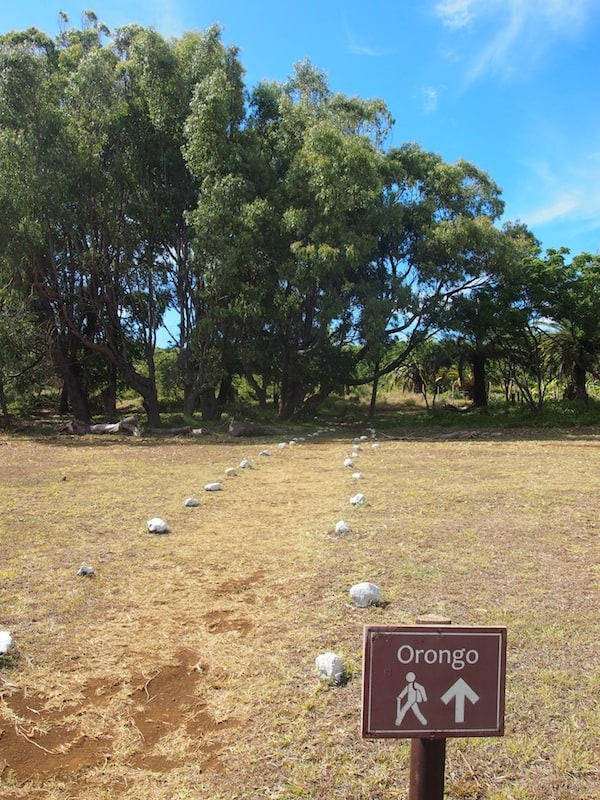 An meinem letzten Tag auf der Osterinsel mache ich mich auf, den Vulkankrater Orongo zu erkunden ...