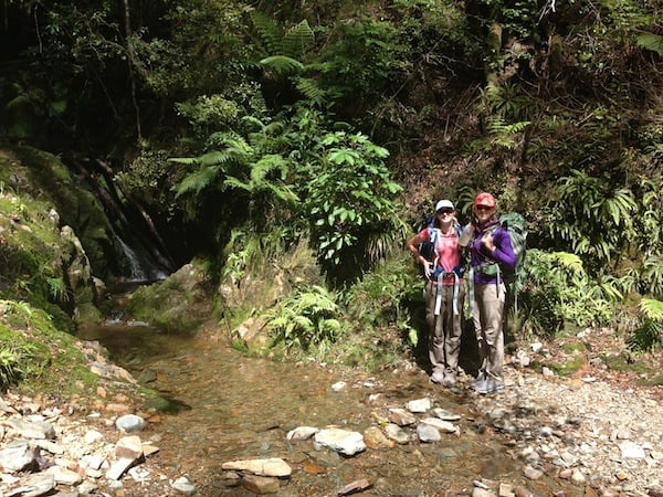 Thank you so much, dear Kenzie & Shasta, for joining me on this last section of my Heaphy Track adventure down from Perry Saddle Hut to Golden Bay!