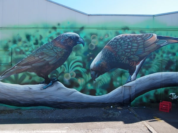 ... and don't you just love the intricate artwork on those Kea native parrots here? Apparently, we are told they were painted in just one day! True art I believe.