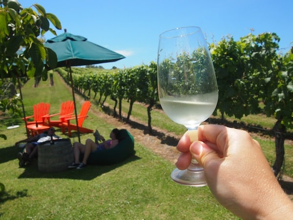 Cheers to their amazing vineyard setting with a glass of fresh 2014 Riesling …