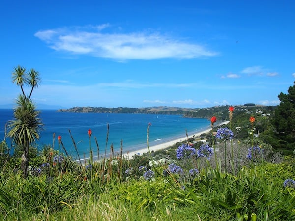 And would you believe that most wine tastings on Waiheke Island throw in spectacular vistas such as this one?