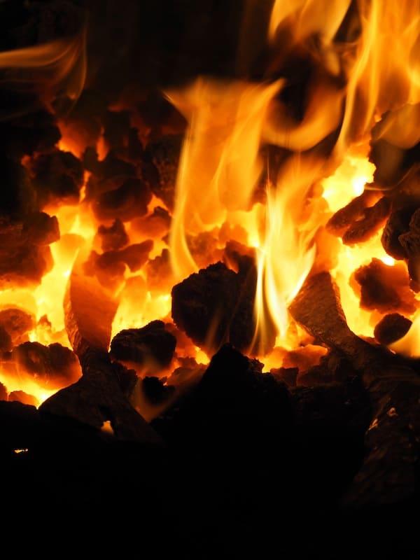 Fische im Feuer ...