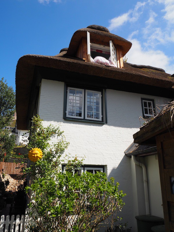 ... as well as some houses that still feature reef-style rooftops!