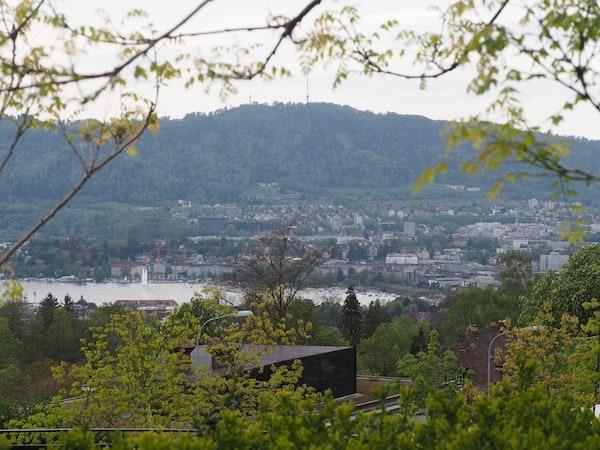 Blick über Zürich ...