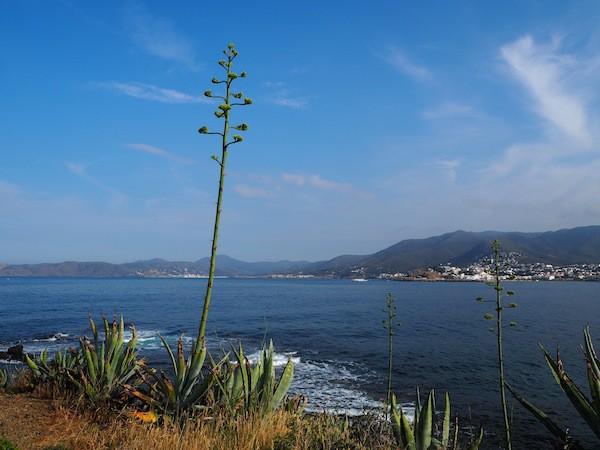 … nach und nach verliebe ich mich mehr in Llançà mitsamt seiner Cap de Creus Halbinsel im Norden der berühmten Costa Brava von Katalonien.