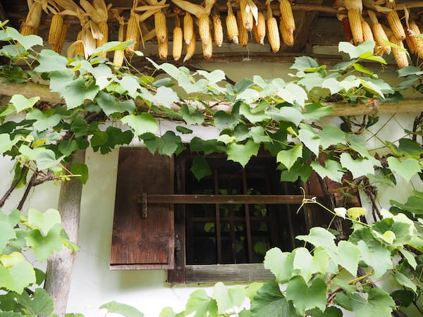 Von alten Bauernhäusern wie beispielsweise hier aus dem Burgenland, die in liebevoller Kleinarbeit hier komplett neu errichtet und wieder aufgebaut wurden ...