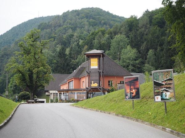 Das 1. Österreichische Freilichtmuseum Stübing liegt direkt am Waldrand ...