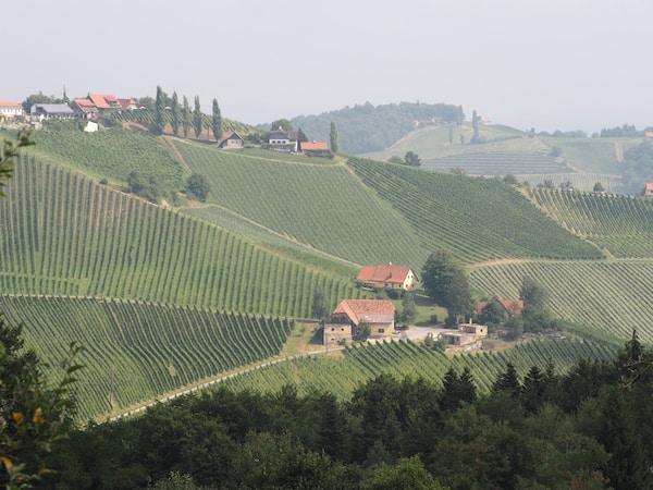 ... inmitten der zauberhaften Weinregion der Südsteiermark.