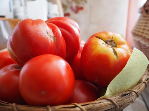 Die Kraft der Sonne will schließlich genutzt sein - wie hier in diesen fruchtig-frischen Tomaten!
