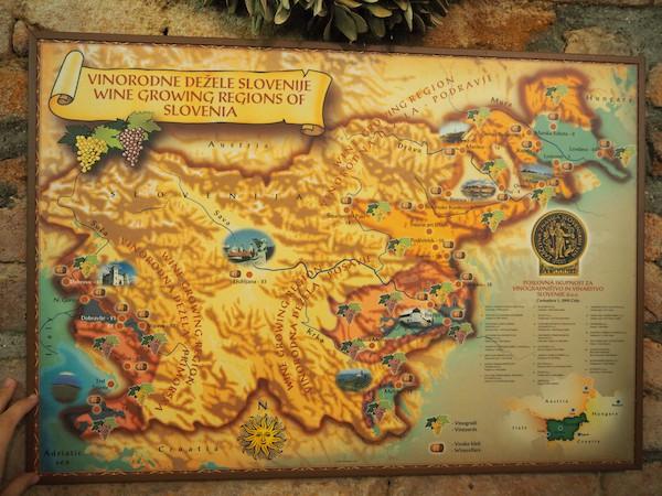 … und einen überaus guten Weinkeller beschickt. Hier erfahre ich zudem mehr über die Weinregionen Sloweniens - Wir müssen wieder kommen!