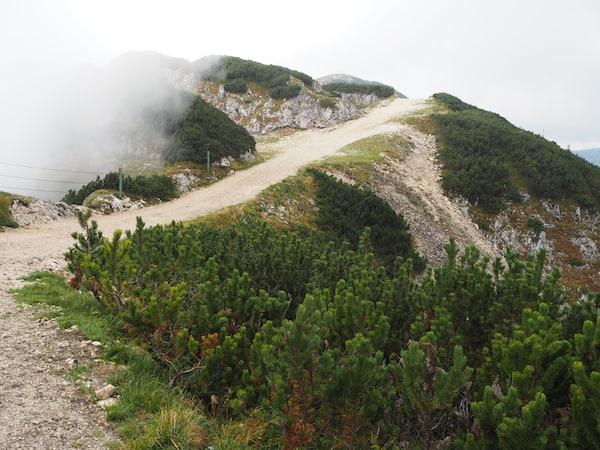 Ein Traum ist die frische, kühle Luft am Berg ...