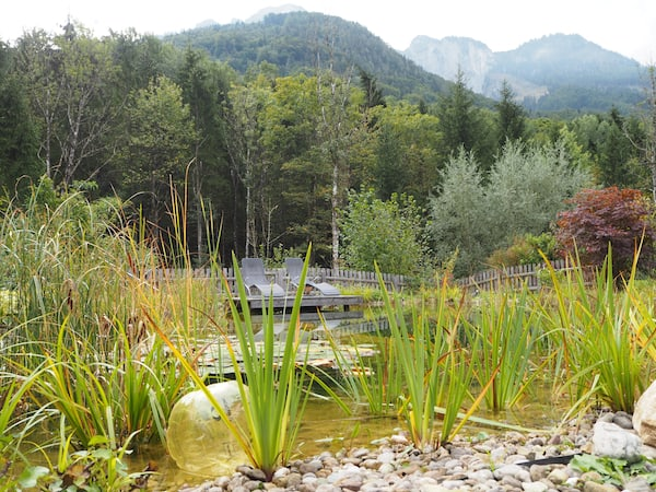 """... bis hinein in den privaten Garten von Renate Proffer, der """"Kräuterdame"""" von Grödig."""