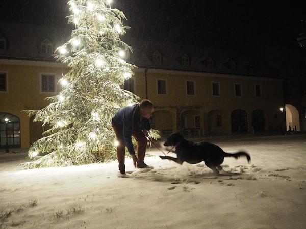 """""""Dog-friendly"""": Das Hotel Althof Retz heißt Vierbeiner herzlich willkommen."""