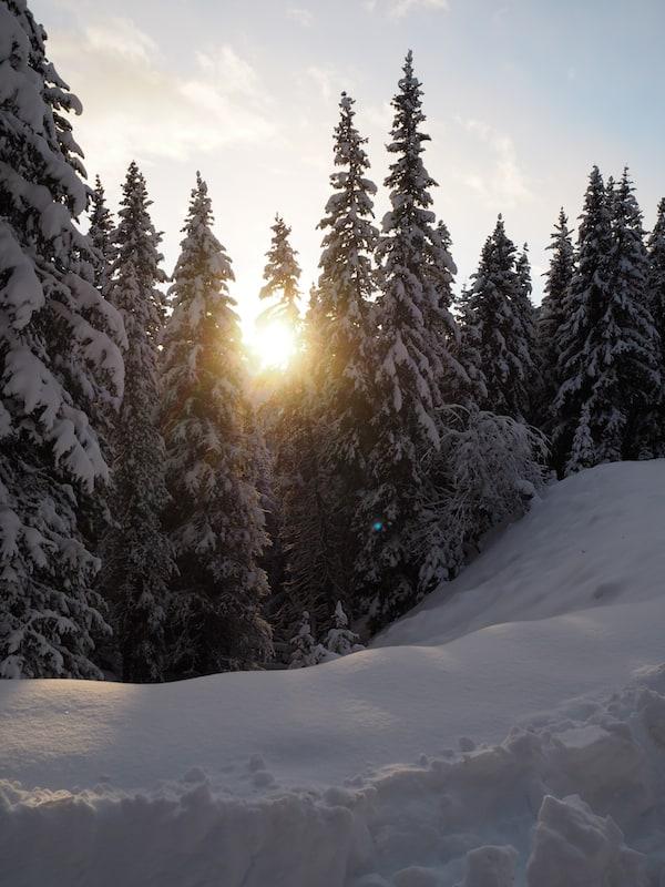 … empfiehlt es sich exakt den Sonnenuntergang abzupassen, denn mit dem damit verbundenen Temperatursturz in den Bergen ...