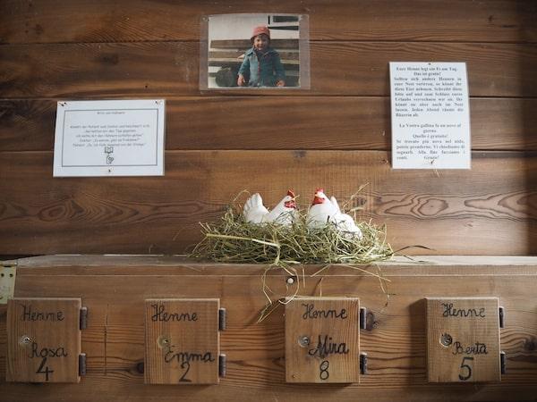 """Hier kann jede Familie, die zu Gast ist, im Stall stets nach den """"zimmereigenen"""" Eiern schauen ..."""