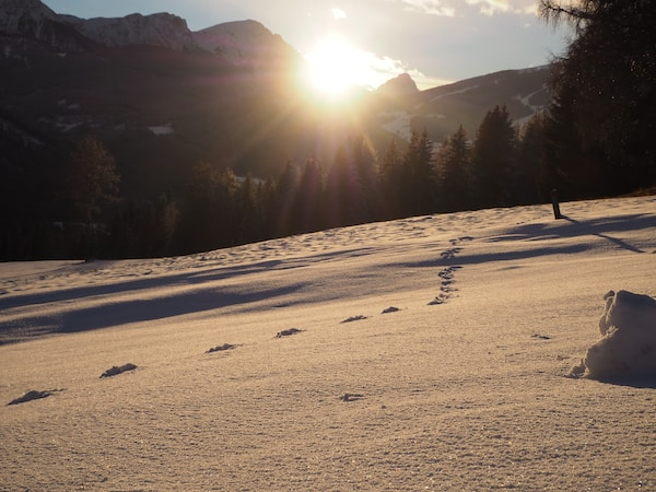 … Südtirol, wir kommen wieder !!!
