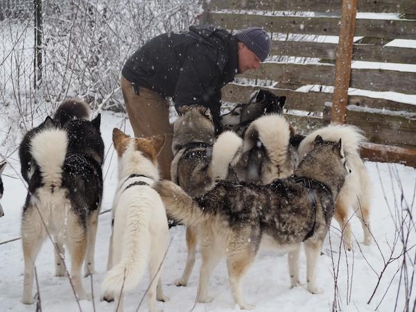 ... wer sich Zeit nehmen möchte: Zeit für Entschleunigung, eine völlig neue, faszinierende Welt - Huskies und den Hundezüchter sowie Abenteurer Martin.