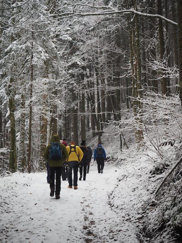 ... zu der wir nach kurzem Fussmarsch durch den Zauberwald ...