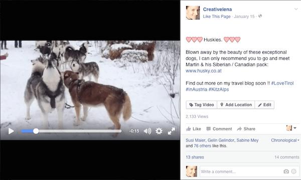 ... zu guter Letzt lade ich Euch ein, dieses Video anzusehen welches in kürzester Zeit knapp 40.000 Zuschauer (!) im Netz erreicht hat.! Ich sag's ja: #HuskiesGehenImmer !!