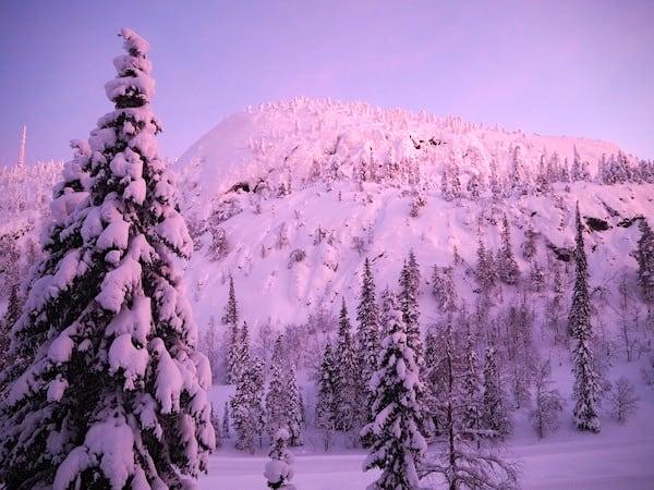 Morgenstund hat (rosa) Gold im Mund: Abschied aus Lappland mit genug Magie für eine hoffentlich baldige Wiederkehr!