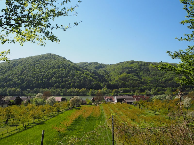 ... through the World Heritage Landscape of the Wachau valley ...