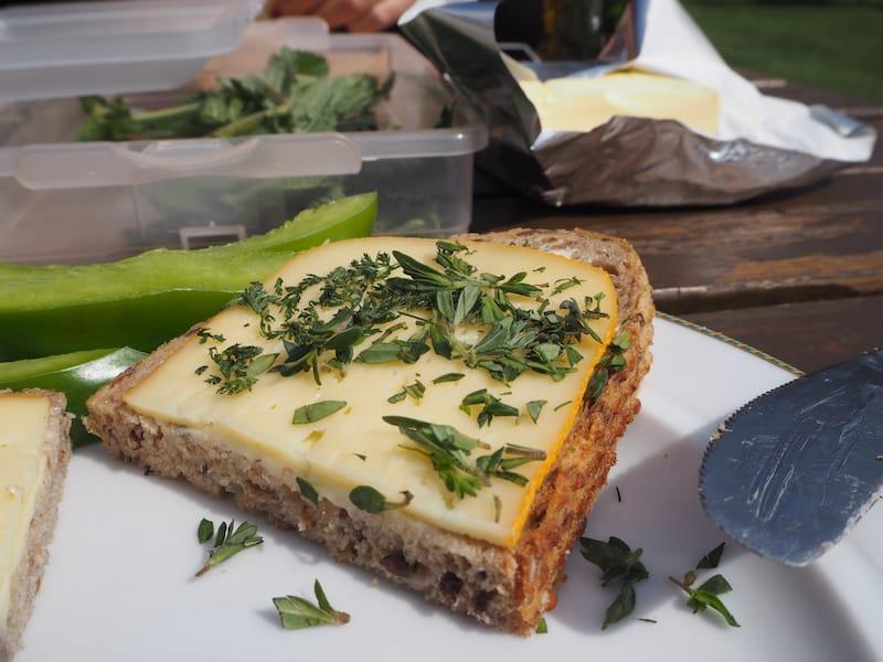 ... sowie natürlich jede Menge Gelegenheit, die selbstgepflückten Kräuter aufs Brot ...