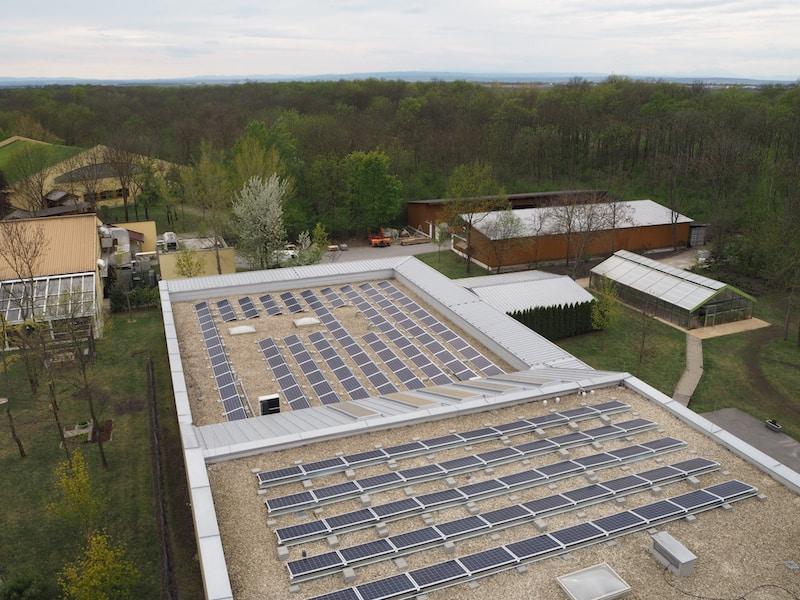Blick auf die vielen Solarzellen am Dach der Heizungsanlage des Umweltzeichen-Betriebes ...